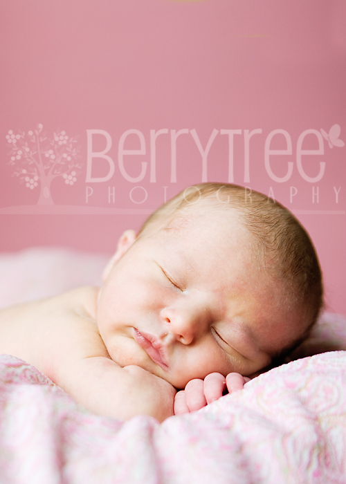 Lily DSC 0359 web Tiny and Pure – BerryTree Photography : Woodstock, GA Newborn Photographer
