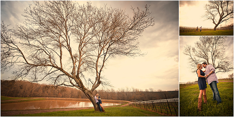 Jamie and Justin9 web1 Jamie & Justin | Montaluce Winery Engagement | BerryTree Photography