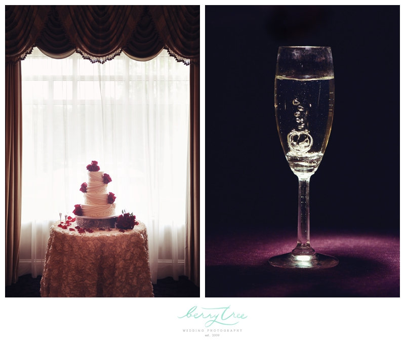 2013 01 03 0052 Everett & Nashawn | Villa Christina | Atlanta, GA | BerryTree Wedding Photography