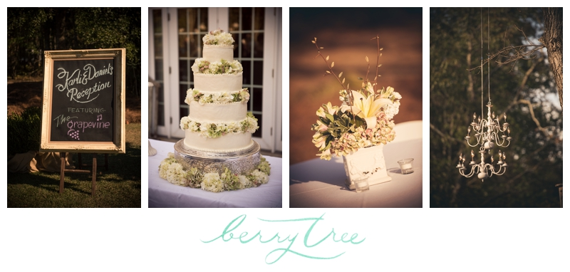 2015 01 28 0024 Macon GA Elegant Backyard Wedding | Atlanta & Greenville Wedding Photographer | BerryTree Photography