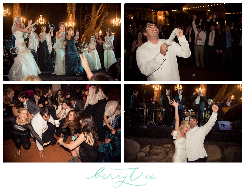 2015 01 28 0032 Macon GA Elegant Backyard Wedding | Atlanta & Greenville Wedding Photographer | BerryTree Photography