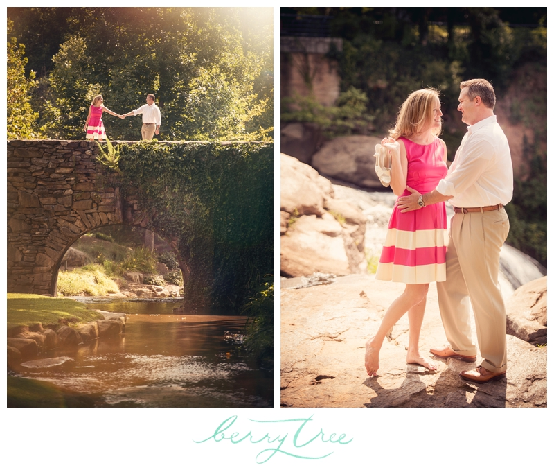 2015 01 28 0038 Falls Park Downtown Greenville, SC | Engagement Session | Wedding Photographer | BerryTree Photography